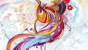 Phoenix Illustration